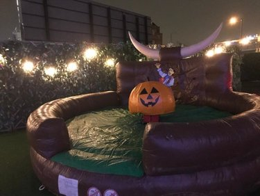 rodeo pumpkin hire London, Kent, Essex,Surry